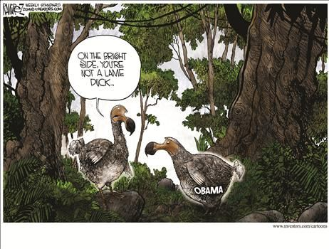 By Michael Ramirez - July 28, 2014