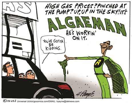 Algaeman to the Rescue