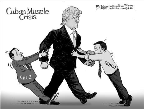 Political Cartoons by Steve Breen
