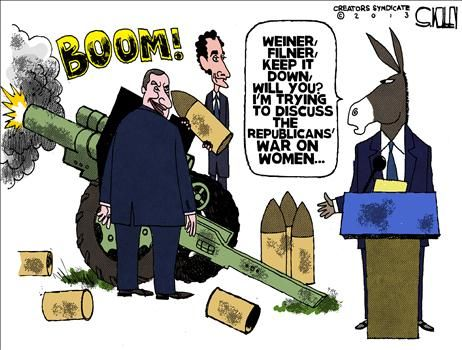 Political Cartoons by Steve Kelley