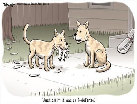 Political Cartoons by  Bennett