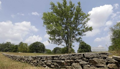 This Monday, July 9, 2012 photo shows a stone wall built during the slavery era in Lebanon, Tenn. The land was once part of a plantation where Jordan Anderson was a slave to Col. Patric