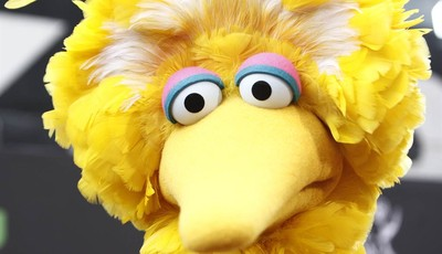 FILE - In this Aug. 30, 2009 file photo, Big Bird arrives at the Daytime Emmy Awards in Los Angeles.  What do a Navy mom, Big Bird and AARP have in common? They all want President Barac