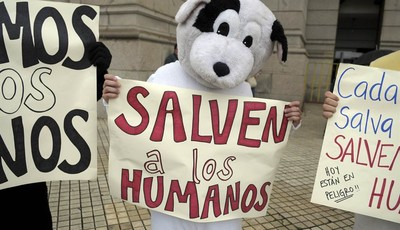 """Pro-life demonstrators dressed in animal costumes holding protest signs that read in Spanish; """"Save the humans,"""" perform in front of the Uruguayan Congress in Montevideo, Uruguay, Wedne"""