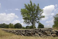 -                This Monday, July 9, 2012 photo shows a stone wall built during the slavery era in Lebanon, Tenn. The land was once part of a plantation where Jordan Anderson was a slave to Col. Patric