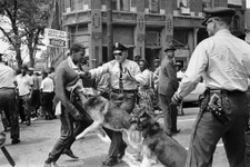 -                FILE - In this May 3, 1963 file photo, a 17-year-old civil rights demonstrator, defying an anti-parade ordinance of Birmingham, Ala., is attacked by a police dog. 1963 was a year of rev