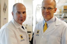 -                In this undated photo provided by the University of Michigan Health System, Scott Hollister, Ph.D., left, and Glenn Green, M.D., of the University of Michigan, pose for a photo. In a me