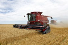 -                FILE - In this July 9, 2009 file photo three combines harvest the winter wheat on the Cooksey farm near Roggen, Colo.This week the Senate resumes debate on the almost $100 billion-a-yea