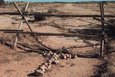 -                FILE - In this Saturday, Oct. 9, 1999 file photo, a cross made of stones rests below the fence in Laramie, Wyo. where a year earlier, gay University of Wyoming student Matthew Shepard w