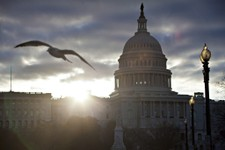 -                FILE - In this March 7, 2103 file photo, a seagull flies as the sun breaks through dark clouds at dawn over Capitol Hill in Washington. Members of Congress are traveling less and worryi