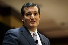 Ted Cruz 2016?