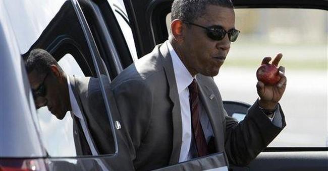 Limbaugh Wants Obama-Biden Ticket