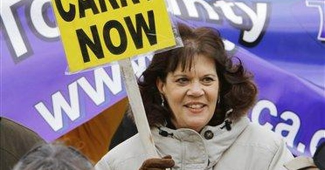 Ill. likely to see fierce battle over gun control