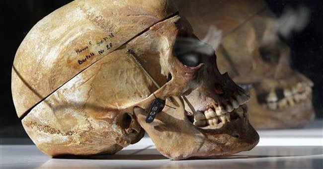 German museum returning Namibian skulls
