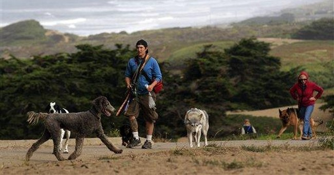 San Francisco dog owners hope to sway mayoral race