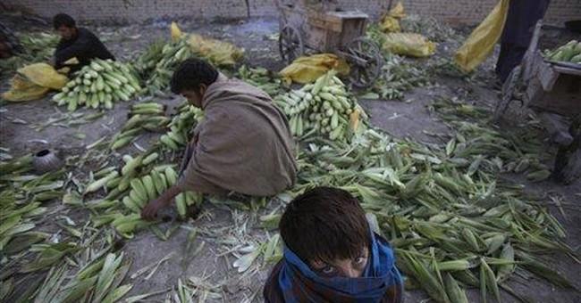 Former Afghan MP breaks hunger strike
