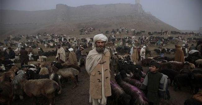 Taliban chief asks militants not to harm civilians