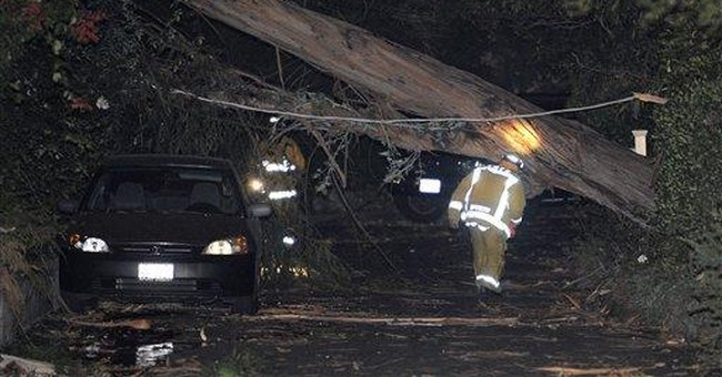 Strong Santa Ana winds topple trees, power lines
