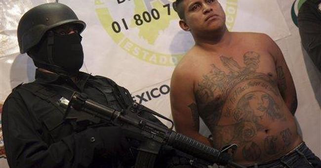 Mexico City street gangs mimic cartel violence