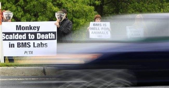 Bristol shareholders reject PETA animal proposal