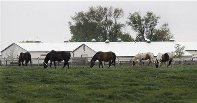 Feds take horses from suspected Illinois embezzler