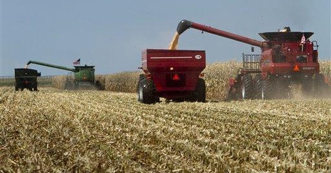 New farm bill would end direct payments to farmers