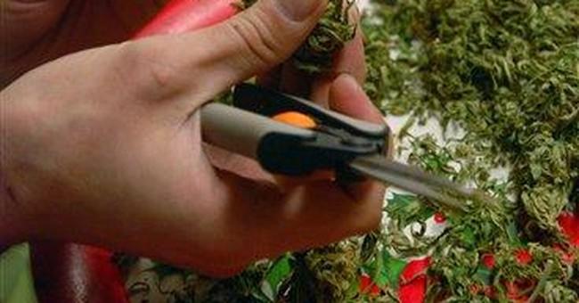 "New debate: When is medical marijuana ""usable?"""