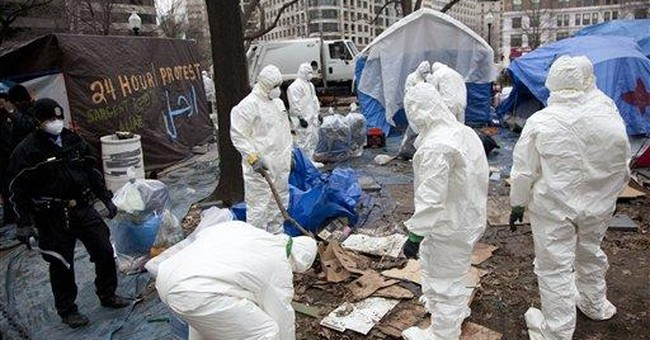 Police: 11 arrested at Occupy DC site
