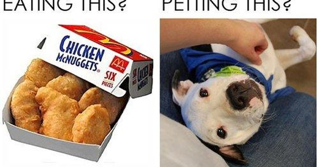 McDonalds pulls ad after pit bull owner outrage