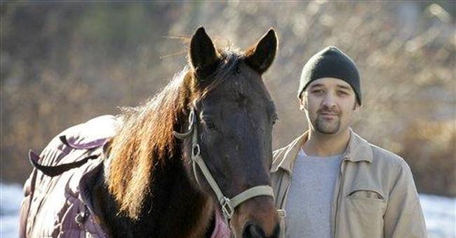 Horse left at Ohio Amish-area Walmart needs home