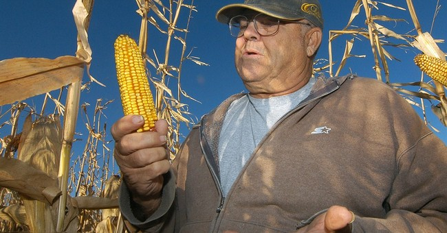 "New 959-Page Farm Bill Is Full Of ""Goodies"""