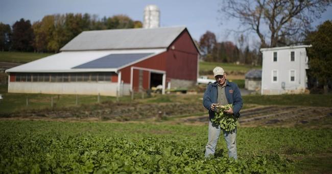 Farm Subsidies Can Affect Your Health