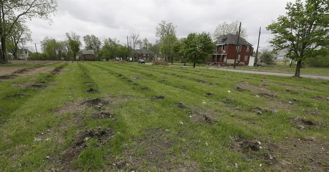Project bringing 15K trees to distressed Detroit