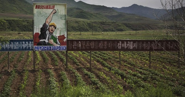 AP Exclusive: North Korea pushes farmers for more