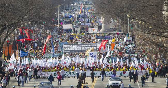 The March for Life and Fighting for the Unborn