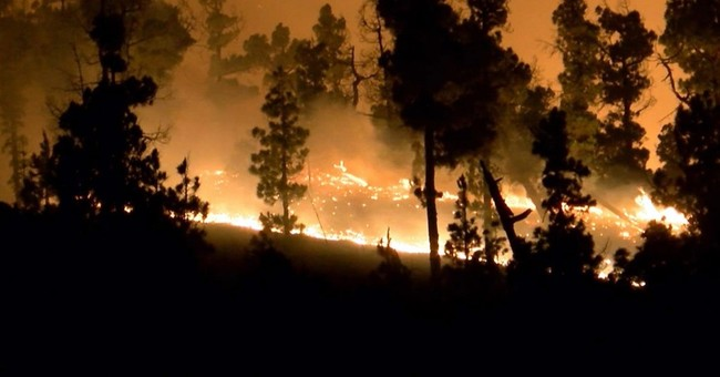 Three dead including elderly woman as wildfire hits island of Madeira
