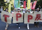 A decade in the making, the controversial Trans-Pacific Partnership (TPP) is reaching its climax and as Congress hotly debates the biggest trade deal in a generation, its backers have turned on the cash spigot in the hopes of getting it passed.