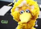 Big Bird Agreed to Board Doomed Challenger Space Shuttle, Escaped Death by Being Too Big