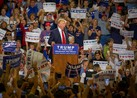 "Republican presidential candidate Donald Trump, citing ""the media,"" tells supporters in Albuquerque, New Mexico, that a small group of war veterans picketing Trump Tower were put there by Democratic rival Hillary Clinton."