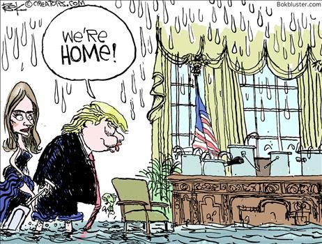 Political Cartoons by Chip Bok