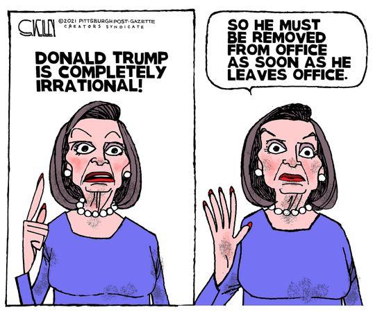 Political Cartoons by Steve Kelley