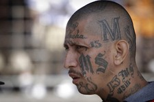 Criticizing Murderous MS-13 is Apparently Racist Now