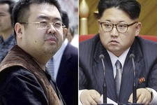Spy Novels and Whodunnit: North Korea's Criminal Reality Is Intolerable