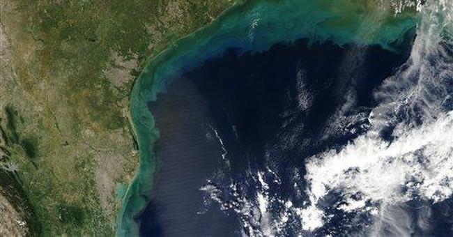 Forecast predicts biggest Gulf dead zone ever