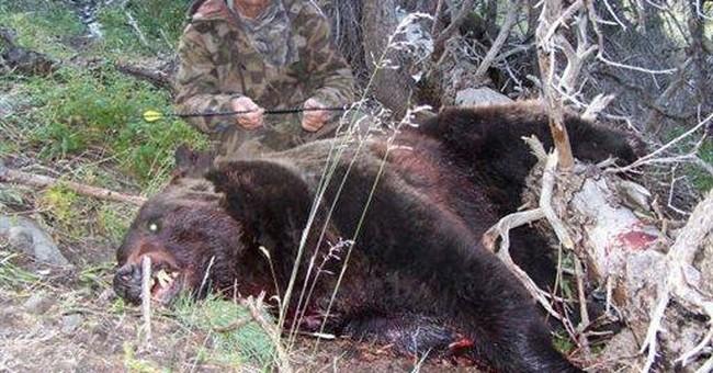 E. Idaho elk hunter hospitalized after bear attack