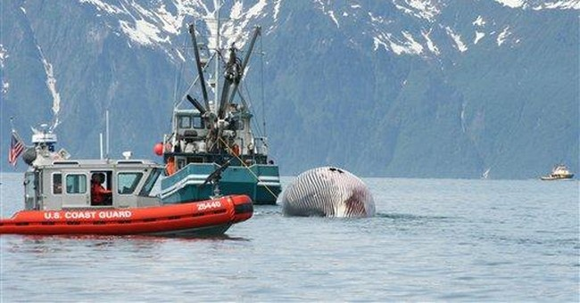 NTSB: Open doors likely cause of 2008 sinking
