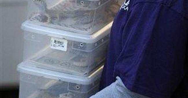 Ohio group proposes ban on owning exotic animals