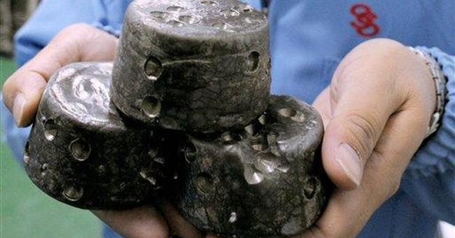 Premier: China won't block rare earth exports