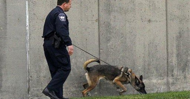 Police label shots at Pentagon as a 'random event'