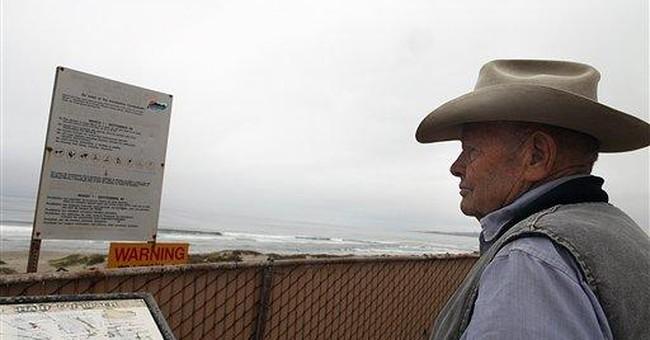Coroner: Great white shark likely killed Calif man